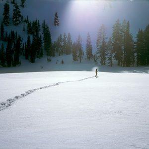 Snow Walker © Keehn Gray