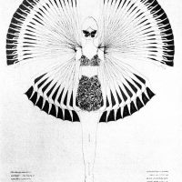 4-1964-butterfly